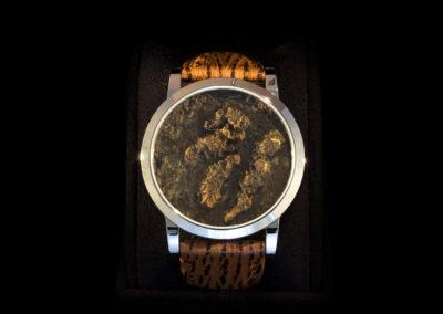 Steel Case & Thai Ants - CHF 4'000